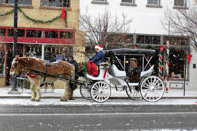 Horse and Carriage in downtown Golden